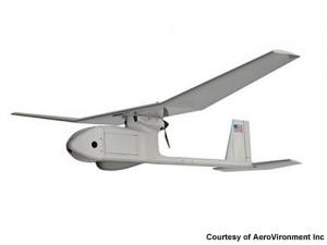 RQ-11 Raven Drone