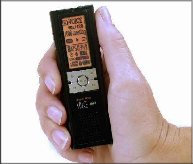 Are you looking for a Mini voice recorder?